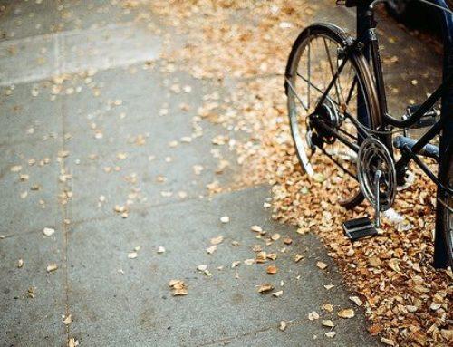 Fall Is Here – Keep A Balanced Lifestyle